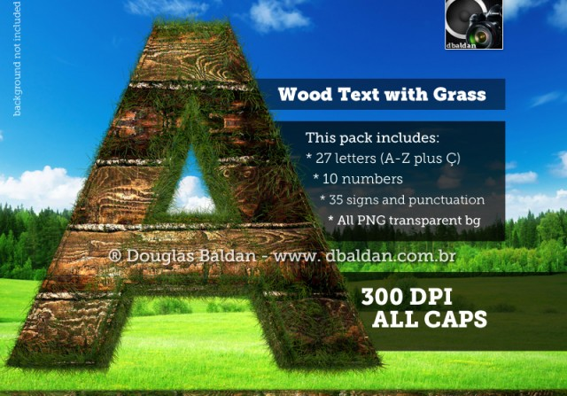 Wood Text with Grass – Stock image
